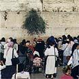 Women of the Wall pray Photo: Zoom 77