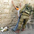 IDF arrest in Hebron Photo: AFP