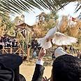 Baptism site Photo: Doron Nissim