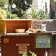 """""""מסעדה"""" לציפורים בגן צאלון באדיבות עיריית הוד השרון"""
