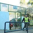 בית ספר דוד ילין בחיפה