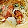 גוזלים בוקעים מהביצה לאחר דגירת האם על ביציה