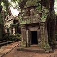 שרידי מקדשים בעיר אנגקור