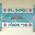 צילום: סלאם דיאב