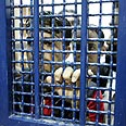 Palestinian security prisoners (archives) Photo: AFP