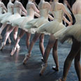 Any ballet company that wants to stage dance must agree to organize educational programs Photo: Shutterstock