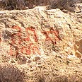 'Price Tag'? Photo: Nasser a-Nawaj'ah, B'Tselem
