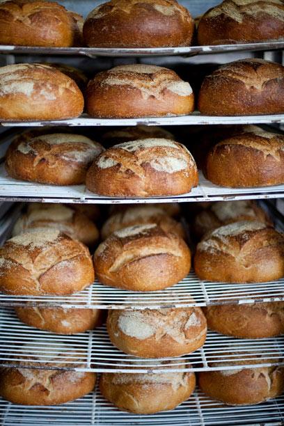 גם אנחנו היינו מופתעים, אבל הלחם אשכרה יוצא ככה. כיכרות מצטננים על הרשת בארקפה (צילום: בועז לביא)