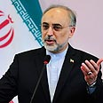 'What is Israel?' Salehi Photo: Reuters
