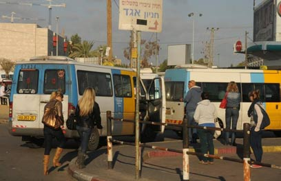 Taxis in Beersheba (Photo: Herzel Yosef) (Photo: Herzel Yosef)