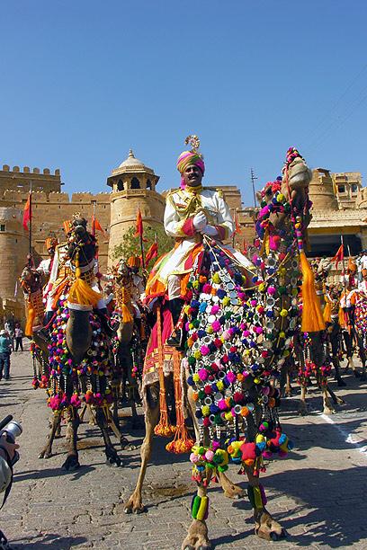 צבעוניות עזה ומשכרת. הודו (צילום: דיאנה לינדר)