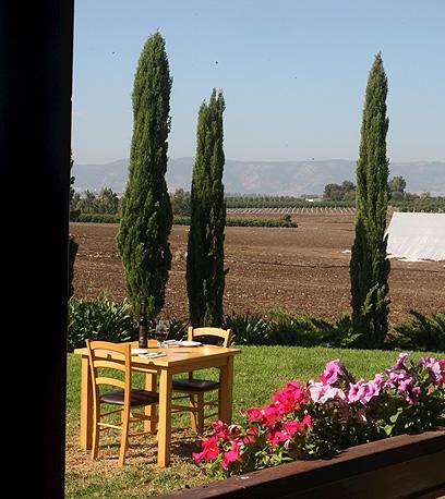 הנוף הנשקף ממסעדת אוקטגון (צילום: אלעד גרשגורן)
