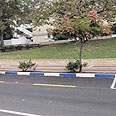 כחול-לבן ברחוב הסמוך לבית החולים בנהריה צילום: דורון גולן