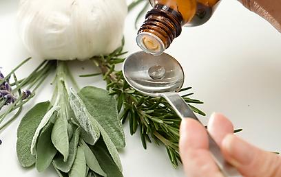 כדאי לשלב צמחי מרפא בתפריט היומיומי (צילום: shutterstock)