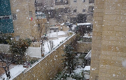 שלג ליד הר הרצל בירושלים (צילום: ארז שמואל)