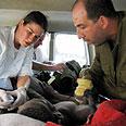 Israeli rescue efforts in Haiti Photo: Noam Barkan