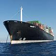 Zim ship. Industry still in vulnerable condition Photo: Danny Solomon
