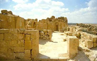 העיר העתיקה שבטה  (צילום: לביא ארצי, החברה להגנת הטבע)
