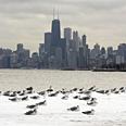 Chicago, Illinois Photo: AP