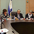 Knesset debate. 'We're asked to decide fates' Photo: Gil Yohanan