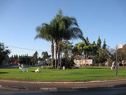 כיכר הנשיא בפרדס חנה (צילום: אורי תאר)