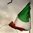 'Biased policy.' Irish flag Photo: Gettyimages imagebank