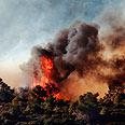 Carmel fire (archives) Photo: Shlomi Nissim