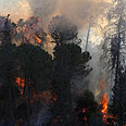 Fire near Usfiya, Saturday Photo: Dror Einav