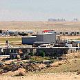 Bedouin settlement in Negev Photo: Herzl Yosef