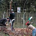 Clashes on Nakba Day Photo: AP