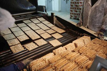 מפעל מצות אביב (צילום: מוטי קמחי)