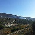 """Wild fire Photo: Noam """"Dabul""""Dvir"""