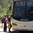 Afikim bus (Archives)