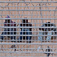 Infiltrators at the border Photo: Reuters