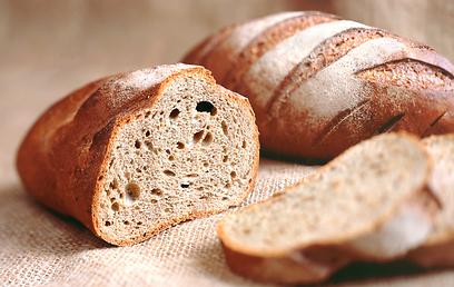 לחם מקמח מלא. מאיזו חיטה מייצרים אותו? (צילום: shutterstock  )