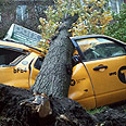 Damage caused by Sandy Photo: Yishay Sharabani