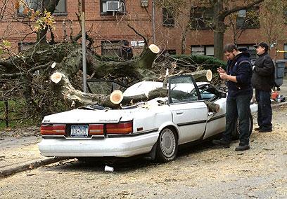 """עץ קרס על רכב בניו יורק. היו שביקשו """"להציל את האמריקנים"""" (צילום: אבי גרוס)"""