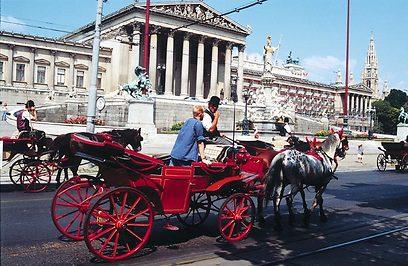 ליהנות מרכיבה על סוסים, נסיעה בכרכרות וביקור ביערות ()