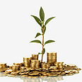 Investing in the environment (Illustration) Photo: Shutterstock