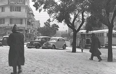 """רחוב בן יהודה בתל-אביב נצבע בלבן (צילום: דוד אלדן, לע""""מ)"""
