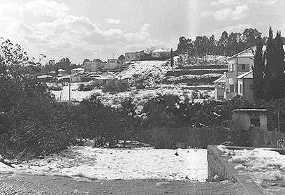 """גם בני ברק נצבעה בלבן (צילום: דוד אלדן, לע""""מ)"""