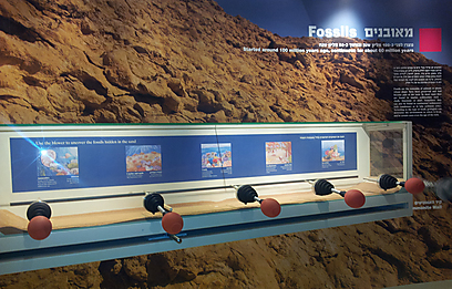 לדעת הכל על המכתש ותוכנו. אולם הגיאולוגיה במרכז המבקרים (צילום: זיו ריינשטיין)