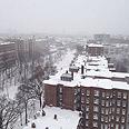 Boston Photo: Shay Bazak