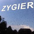 Zygier's grave Photo: Reuters