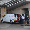 Rebels transferred to hospial via IDF ambulances Photo: Avihu Shapira