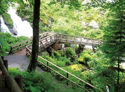 """גשרוני אבן טיפוסיים במפלי טריברג (צילום: ד""""ר מוטי רוזן, טבע הדברים)"""