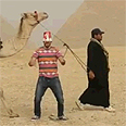 Egyptian does the 'Harlem Shake'