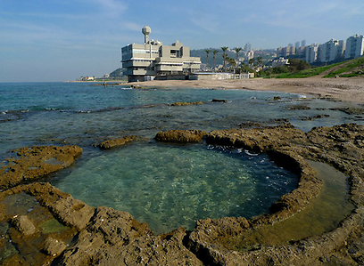 רצועת החוף הכי יפה של חיפה.שמורת חוף וים שיקמונה (צילום: גיא שחר)