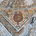 Mosaic discovered in Beit Kama. Well-preserved Photo: Yael Yolovitch, courtesy of Israel Antiquities Authority