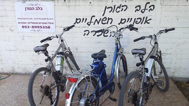 תן לאצבעות לדווש במקומך. אופניים חשמליים בגורן (צילום: זיו ריינשטיין)